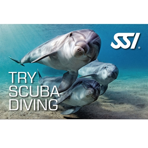 Prøvedyk / Try scuba diving